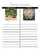 Interpretive Reading activity: Jeu de Quilles, Mölkky, Lawn bowling game