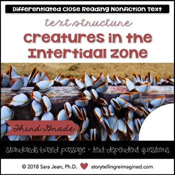 Intertidal Zone Animals Reading Comprehension Passage Questions Nonfiction Text