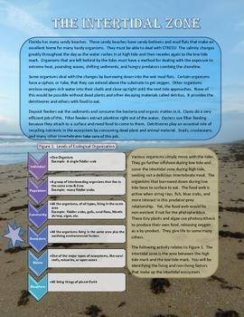 Intertidal Zone - Identifying Abiotic and Biotic Factors