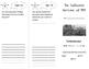 Into Reading 4th Grade Module 3 Trifold Bundle