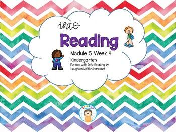 Into Reading Focus Wall Module 5 Week 4 HMH Houghton Mifflin Harcourt