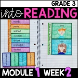 Into Reading HMH 3rd Grade Module 1 Week 2 Stink and the Freaky Frog • GOOGLE