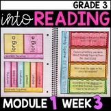 Into Reading HMH 3rd Grade Module 1 Week 3 Scaredy Squirrel Supplement • GOOGLE