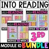 Into Reading HMH 3rd Grade: Module 10 Supplemental BUNDLE • with GOOGLE Slides