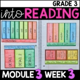 Into Reading HMH 3rd Grade Module 3 Week 3 Why is the Statue of Liberty • GOOGLE