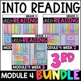 Into Reading HMH 3rd Grade: Module 4 Supplemental BUNDLE • with GOOGLE Slides