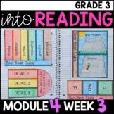 Into Reading HMH 3rd Grade Module 4 Week 3 Two Bear Cubs Supplement • GOOGLE