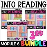 Into Reading HMH 3rd Grade: Module 6 Supplemental BUNDLE • with GOOGLE Slides