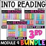 Into Reading HMH 3rd Grade: Module 9 Supplemental BUNDLE • with GOOGLE Slides
