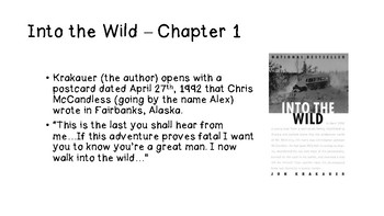 Into the Wild - Chapter by Chapter Summaries