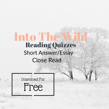 Into the Wild Reading Short Essay Reading Quizzes