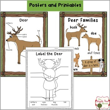 Deer Unit {K-3 CCSS Writing + Craft Project}