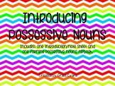 Possessive Nouns: Introduction Bundle