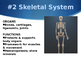 Intro To Anatomy and Physiology Part 2 PowerPoint