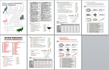 intro to forensic science review worksheet and answer key tpt intro best free printable worksheets. Black Bedroom Furniture Sets. Home Design Ideas