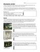 Intro to Art Complete High School Curriculum
