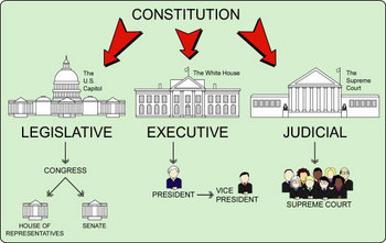 Intro to Branches of Government (Smart Notebook)