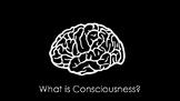 Intro to Consciousness Presentation // Psychology