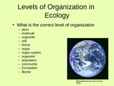 Intro to Ecology