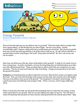 Intro to Ecology, Energy Pyramid - Engaging Science Reading
