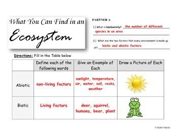 Ecology PowerPoint Presentation
