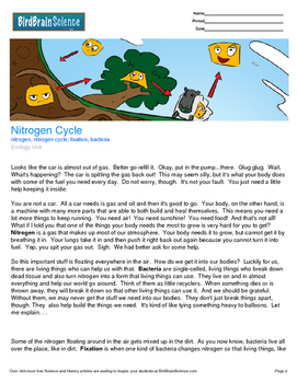 Intro to Ecology, The Nitrogen Cycle - Engaging Science Reading