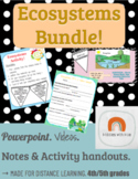 Intro to Ecosystems Bundle: Complete Lesson