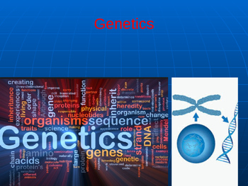Intro to Genetics Vocabulary