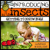Intro to Insects! Vocab, graphic organizers, and lessons