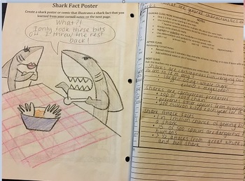 Intro to Interactive Notebooks