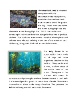 Intro to Marine Ecosystems Collection