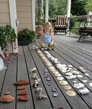 Intro to Montessori Textbook bundle