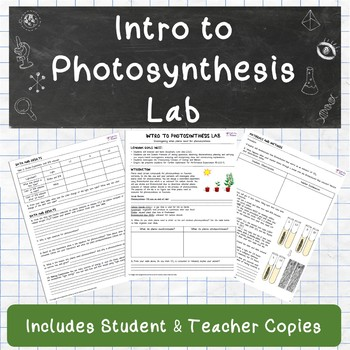 Intro to Photosynthesis Lab