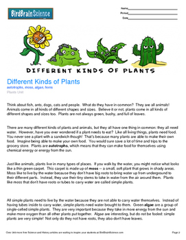 Intro to Plants, Different Kinds of Plants - Engaging Science Reading