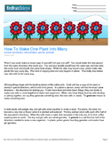 Intro to Plants, How to Make One Plant into Many - Engaging Science Reading