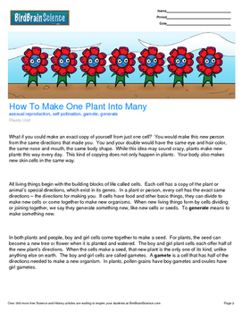Intro to Plants, How to Make One Plant into Many - Engagin
