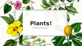 Classification: Intro to Plants Lesson PPT- Editable