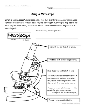 Intro to Primary Microscopes Student Worksheet
