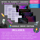 Intro to Punnett Squares Audio-Narrated Slideshow with Notes