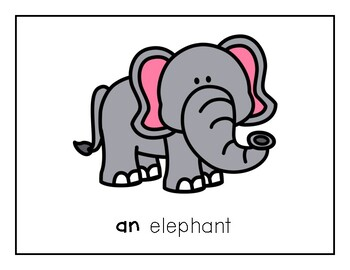 Intro to Reading Sight Word - AN (Animals) *TEACHER EDITION*