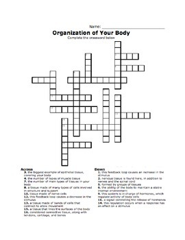 Intro to the Body Crossword