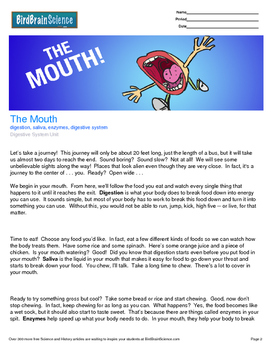 Intro to the Digestive System, The Mouth - Engaging Science Reading