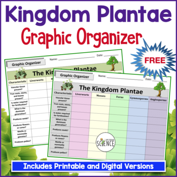 Plant Kingdom Graphic Organizer