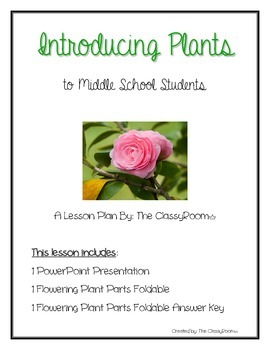 Introducing Plants (Roots, Stems, Leaves, & Flowers)