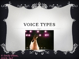 Introducing Voice Types