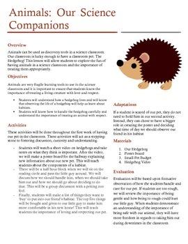 Introducing a Class Pet!
