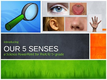 Introducing Our 5 Senses - a Science PPT for Young Learners