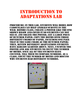 Introduction to Adaptations Lab