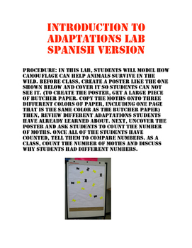 Introduction to Adaptations Lab Spanish Version