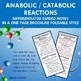 Introduction to Anabolic / Catabolic Reactions Brochure Foldable Notes for INB